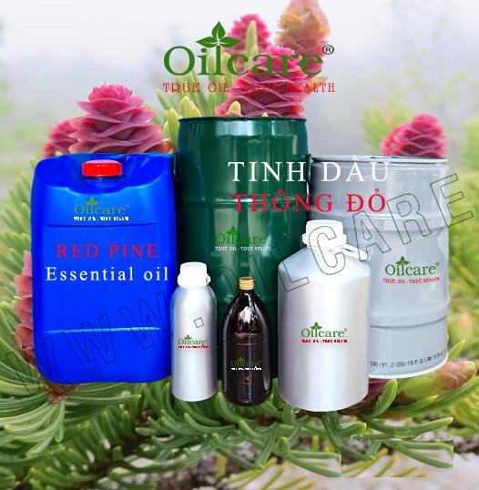 Tinh dầu thông đỏ bán sỉ buôn lít rẻ kg Red Pine Essential Oil mua ở đâu