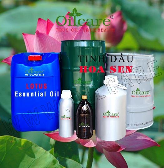 Tinh dầu hoa sen bán sỉ buôn lít kg giá rẻ Lotus fragrance oil mua ở đâu tại tphcm, hà nội, đà nẵng, nha trang