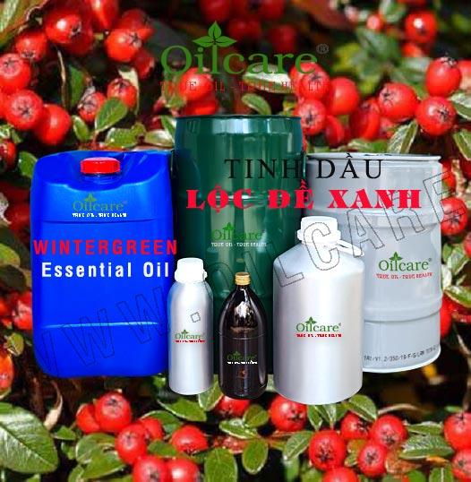 Tinh dầu lộc đề xanh bán sỉ lít kg buôn giá rẻ Wintergreen Essential Oil mua ở đâu tại tphcm, hà nội, đà nẵng, nha trang