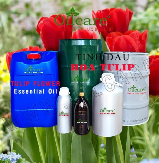 Tinh dầu hoa tulip bán sỉ lít kg buôn giá rẻ Tulip Fragrance oil mua ở đâu tại tphcm, hà nội, đà nẵng, huế, nha trang, hội an