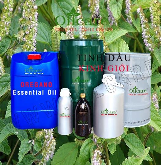 Tinh dầu kinh giới bán sỉ lít kg buôn giá rẻ oregano essential oil mua ở đâu